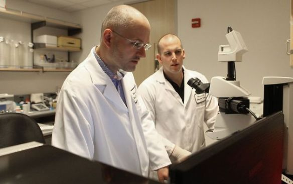 Lead authors Jens Volkmer, M.D. and Stephen Willingham, Ph.D, (right) look at samples of breast cancer tumors from mice under a microscope at Stanford University in Palo Alto, Calif., on Tuesday, March 27, 2012. They have been identifying the protein in cancer and discovering how to block the protein to get the immune system to eliminate the cancer cells. Photo: Liz Hafalia, The Chronicle