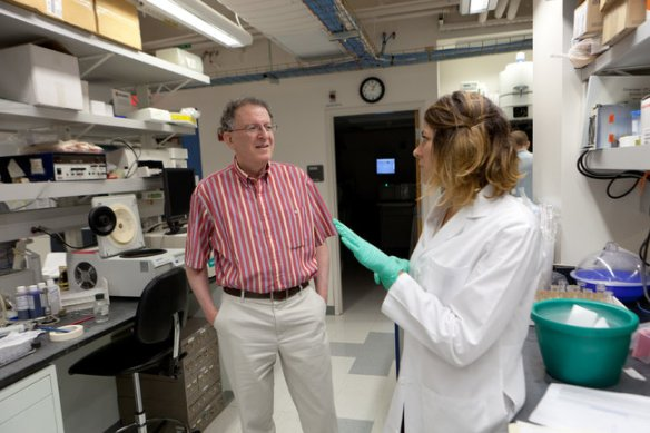 Dr. Jeffrey I. Gordon, left, and Vanessa K. Ridaura are two members of a scientific team whose research shows a connection between human gut bacteria and obesity.